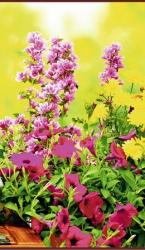 Цветы - греющая инфракрасная, настенная картина гибкая